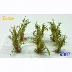 Střední keře -kvetoucí- žlutá- 2-3 cm 6kusů