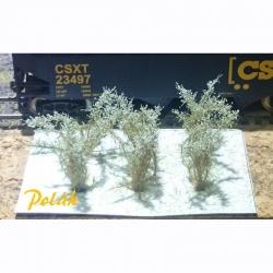Střední keře -kvetoucí- bílá- 2-3 cm 6kusů