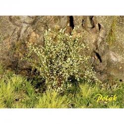 Vysoké keře -střední listí-  zelená vbová- 15kusů