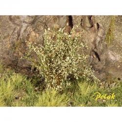 Vysoké keře -jemné listí-  zelená vrbová- 15kusů