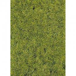 Statická tráva XXL 10 mm - lesní půda - 50g 10mm