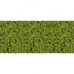 Kompaktní lupení - listí - světle zelené