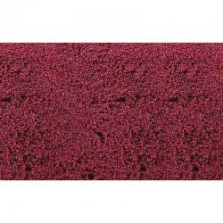 Foliáž listí -červený-