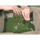 Drcený molitan - světle zelený