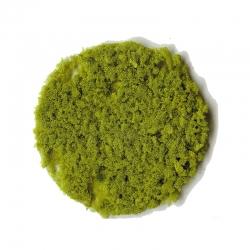 Drcený molitan hrubý -světle zelený- 200ml