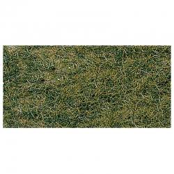 Trávní koberec -horská louka-