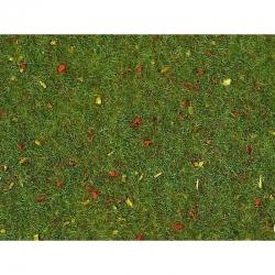 Trávní koberec -kvetoucí louka-