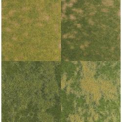 Set jarní a letní trávy   4 kusy