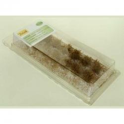 Nízké keře -mikro listí - suchý dub-