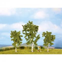 N,Z stromy -bříza-
