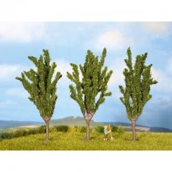 N,Z stromy -topol-