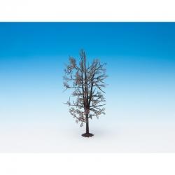 Model stromu bez listí