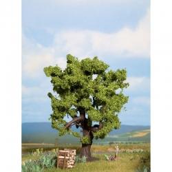 Strom -dub-