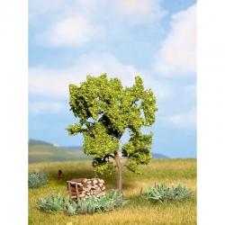 Strom -hruška-