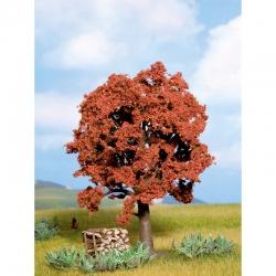 Strom -buk lesní-