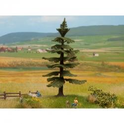 Stromy -norská jedle-