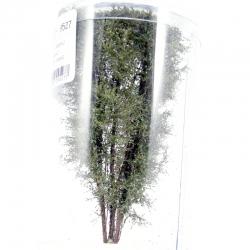 Vícekmenný strom -podzim 2- 12-13cm