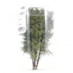 Vícekmenný strom -podzim 2- 8-10cm