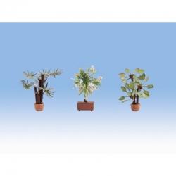 H0 středomořské rostliny