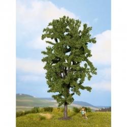 Stromy -kaštan-