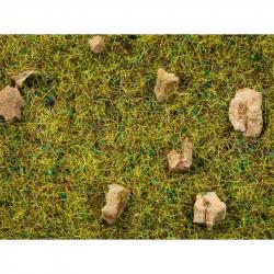 Statická tráva s kamením -kamenitá horská louka- 20g