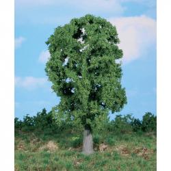 Strom -dub- 20cm