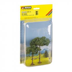 Strom -borovice-