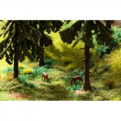 Vegetační startovací sada - les