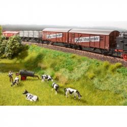 Vegetační startovací sada - železniční násep